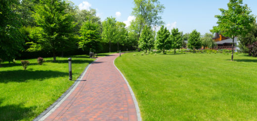 Long stone pavement alley in the park in the spring