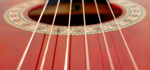 close-up of fingerboard and strings of guitar