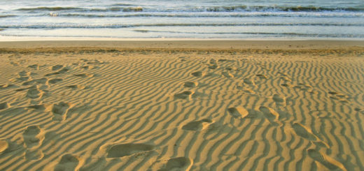 morning empty beach and footprints on sand